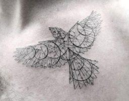 de los tatuajes de aves