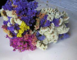 limpiar flores secas