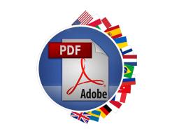 traducir un PDF