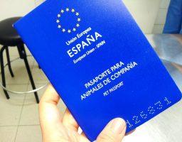 pasaporte a mi perro