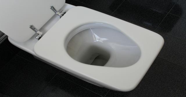 la taza de baño