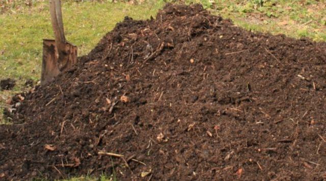 Cómo hacer compost en casa