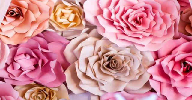 una rosa en papel de seda
