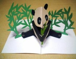 hacer un libro 3D