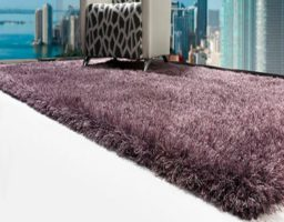 limpiar una alfombra de pelo