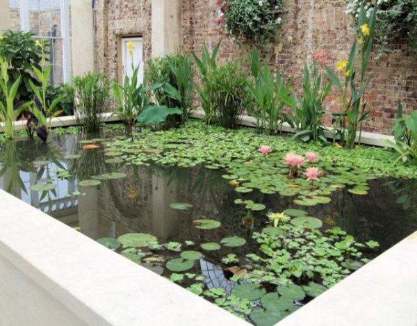 estanques en casa